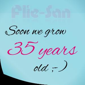 fs-it_fliesan_35years