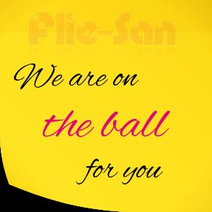 fs-it_fliesan_balls